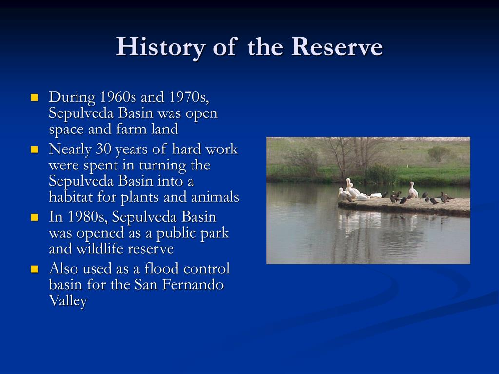 History of the Reserve
