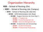 organization hierarchy13