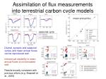 assimilation of flux measurements into terrestrial carbon cycle models