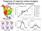 diagnosis of regional carbon budgets modis ameriflux synthesis