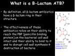 what is a b lactam atb