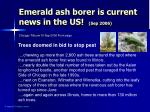 emerald ash borer is current news in the us sep 2006