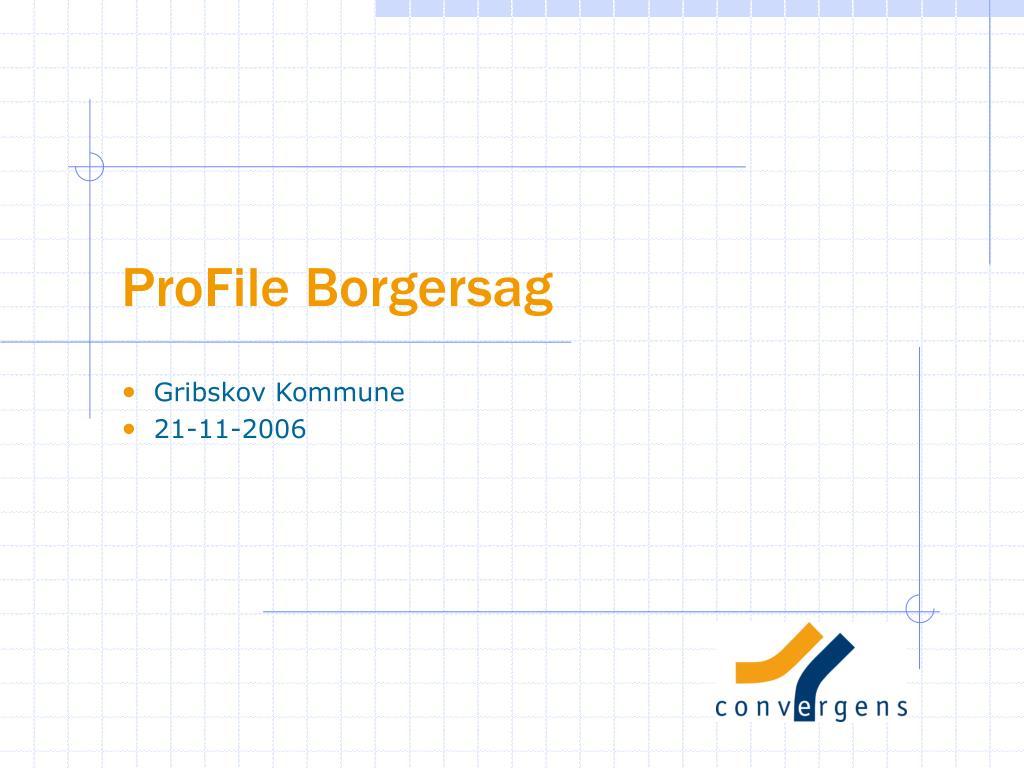 profile borgersag l.