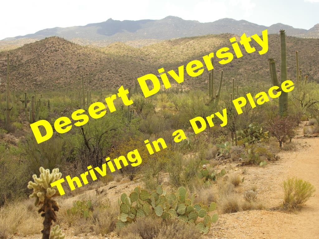 desert diversity l.