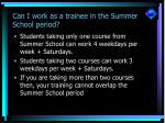 can i work as a trainee in the summer school period