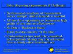 public reporting opportunities challenges