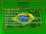 brasil o sus16