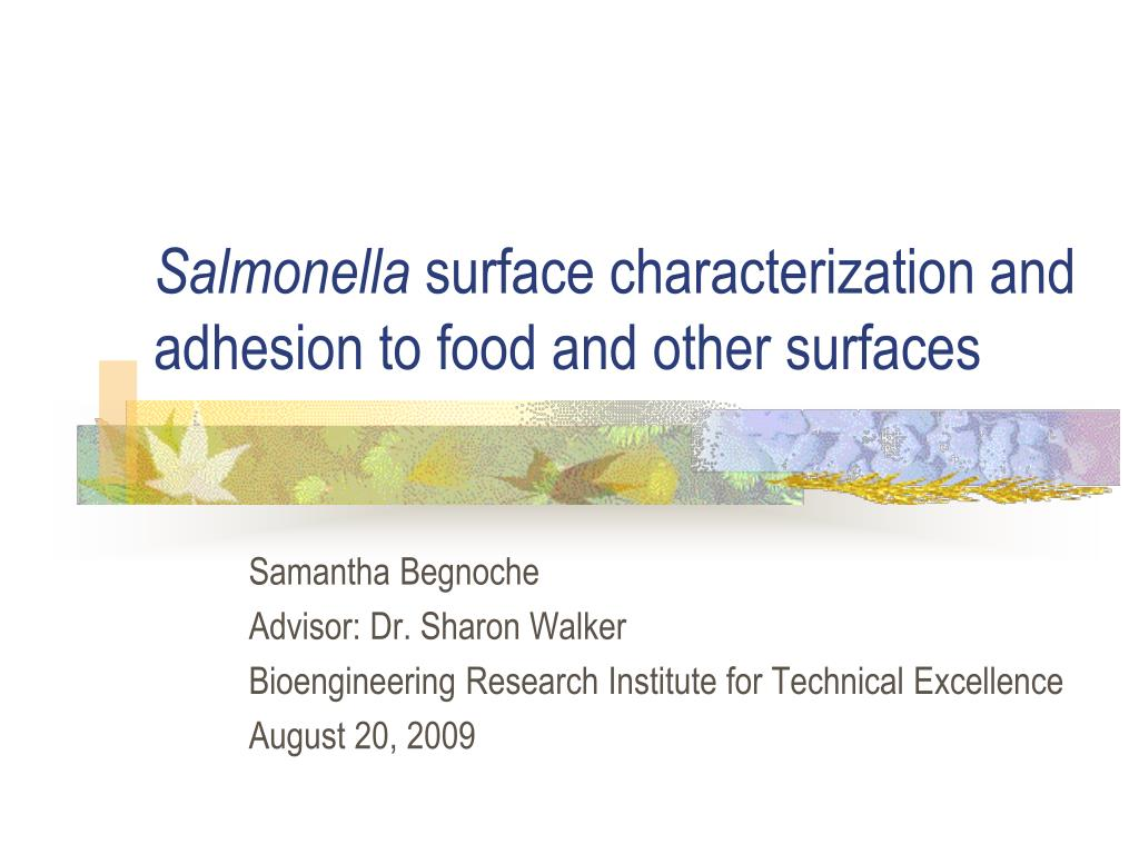 salmonella surface characterization and adhesion to food and other surfaces l.
