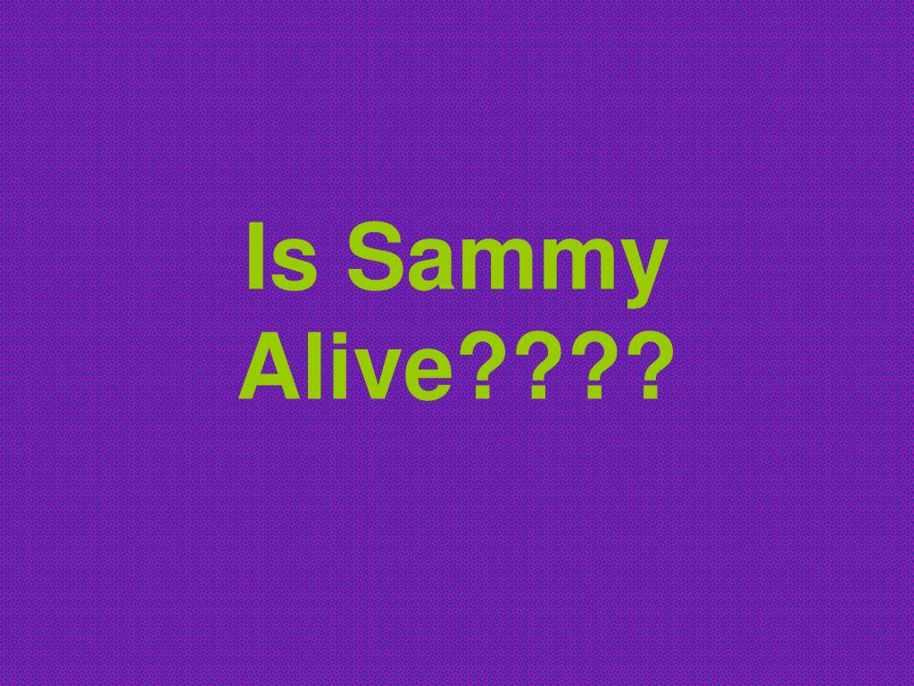 is sammy alive l.