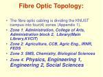 fibre optic topology