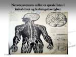 nervesystemets celler er spesialister i irritabilitet og ledningshastighet