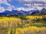 land habitat