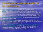 caracter sticas organizacionales de las instituciones