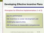 developing effective incentive plans16