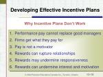 developing effective incentive plans18