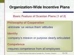 organization wide incentive plans12