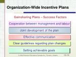organization wide incentive plans14