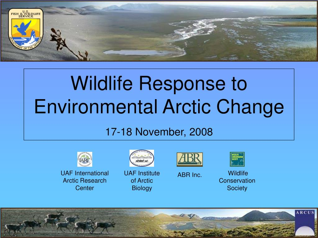 wildlife response to environmental arctic change 17 18 november 2008 l.