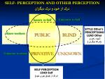 self perception and other perception