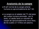anatom a de la sangre44