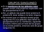 grupos sanguineo