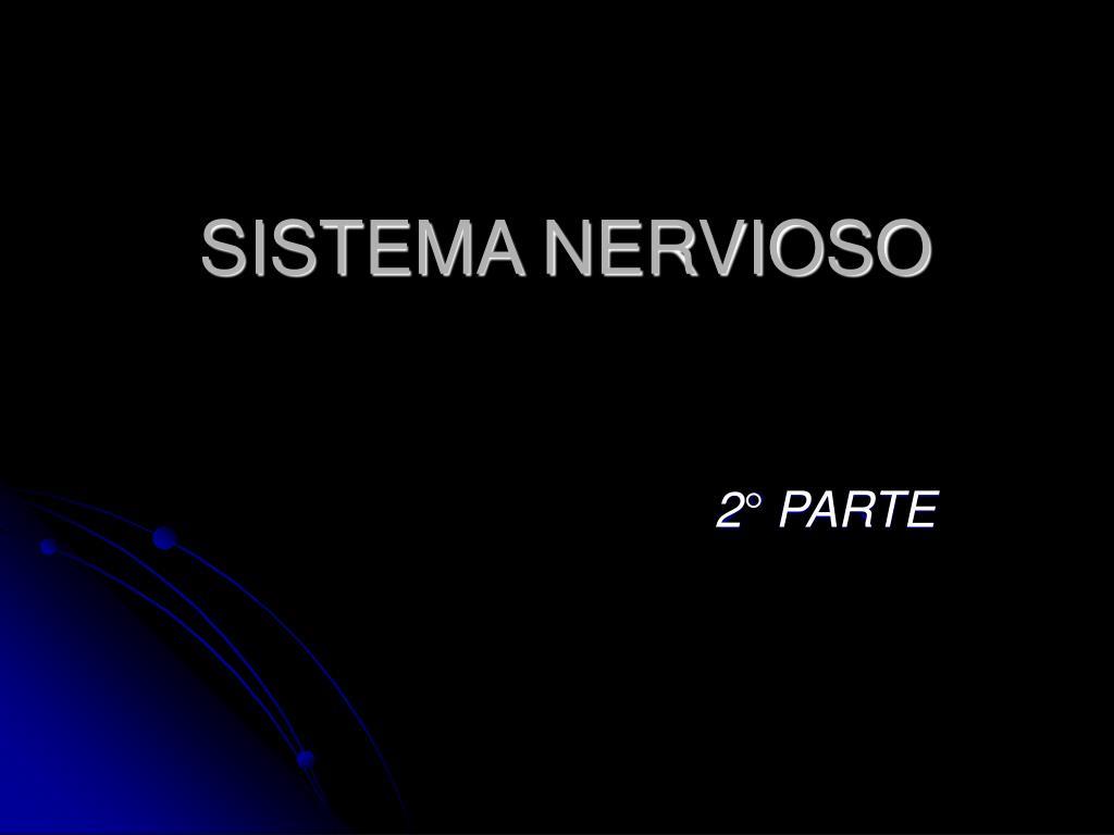 sistema nervioso l.