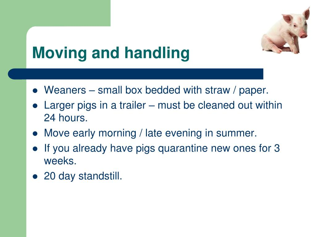 Moving and handling
