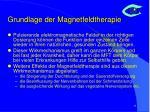 grundlage der magnetfeldtherapie