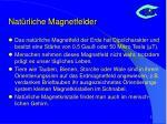 nat rliche magnetfelder