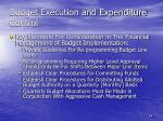 budget execution and expenditure control