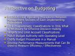perspective on budgeting