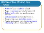 components of effective brief therapy