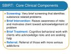 sbirt core clinical components