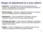 stages of adjustment to a new culture