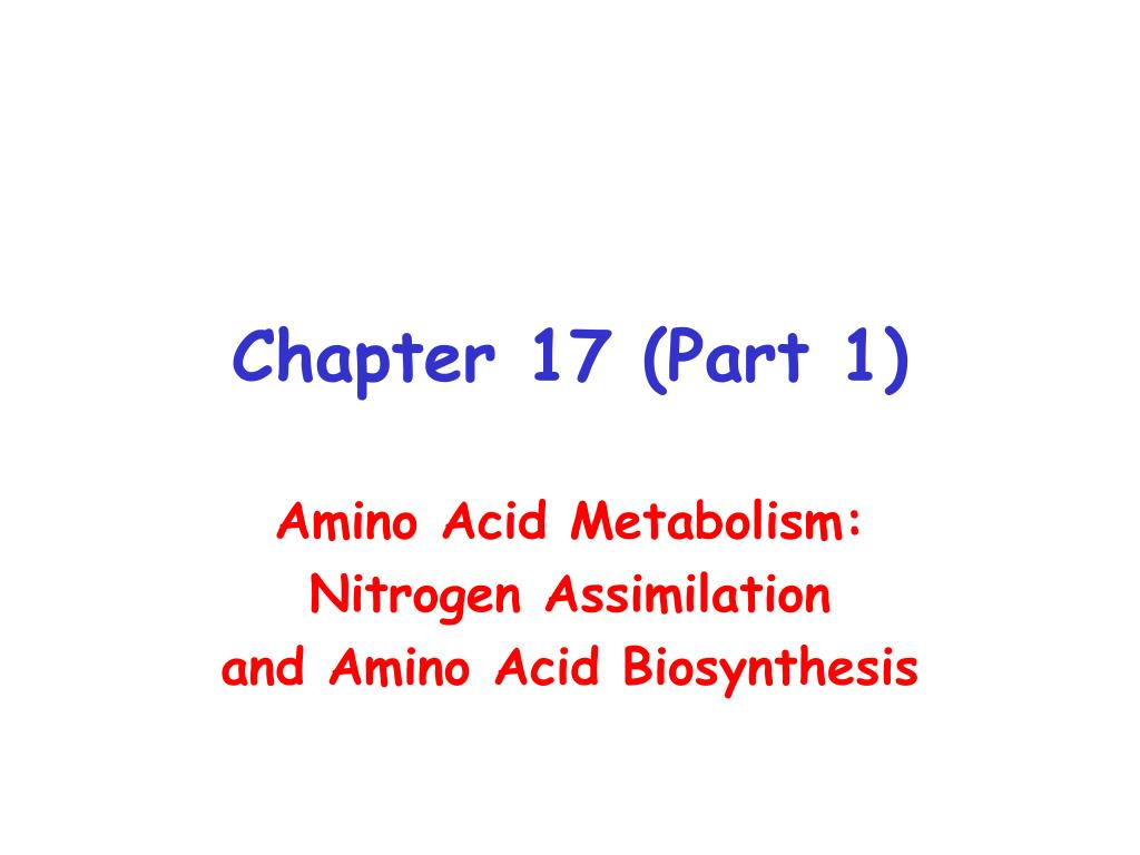 chapter 17 part 1 l.