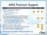 aws premium support