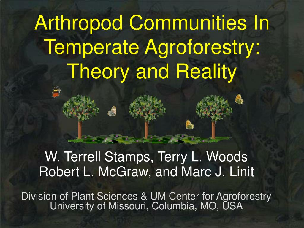 arthropod communities in temperate agroforestry theory and reality l.