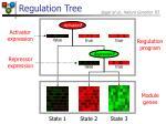 regulation tree