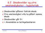 6 2 skadevolder og ytre omstendigheter hypotetisk