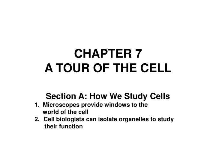 chapter 7 a tour of the cell n.