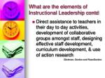 what are the elements of instructional leadership contd