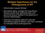 multiple hypotheses for the pathogenesis of ipf