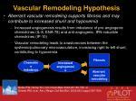 vascular remodeling hypothesis