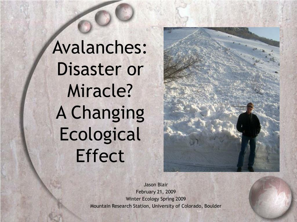 avalanches disaster or miracle a changing ecological effect l.
