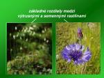 z kladn rozdiely medzi v trusn mi a semenn mi rastlinami