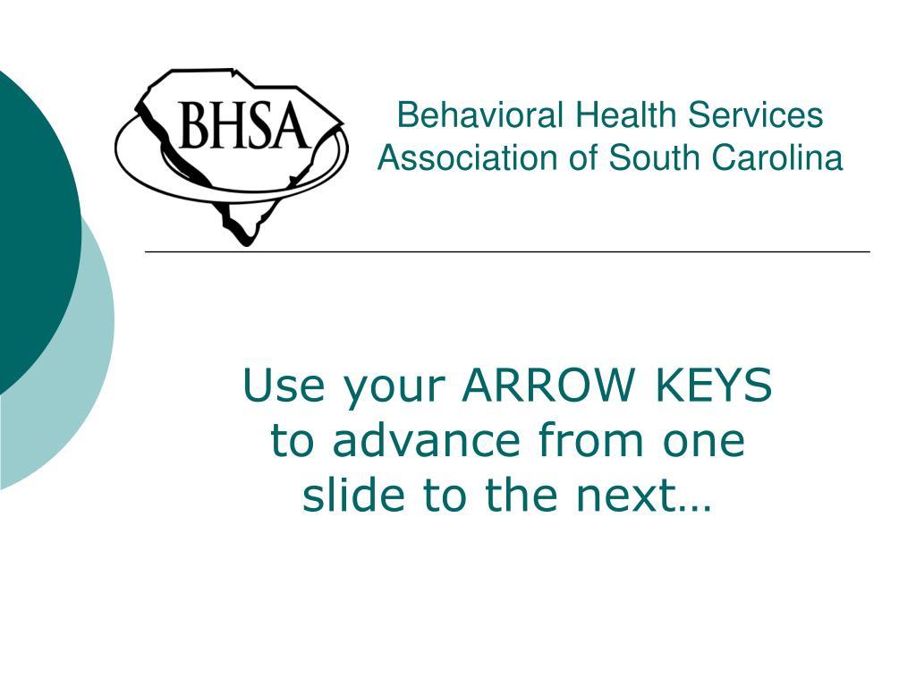 behavioral health services association of south carolina l.