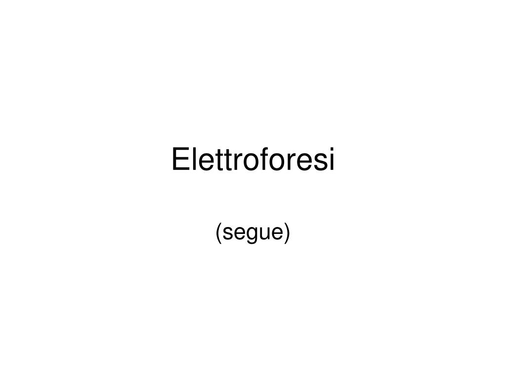 elettroforesi l.
