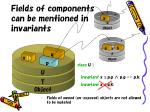 fields of components can be mentioned in invariants