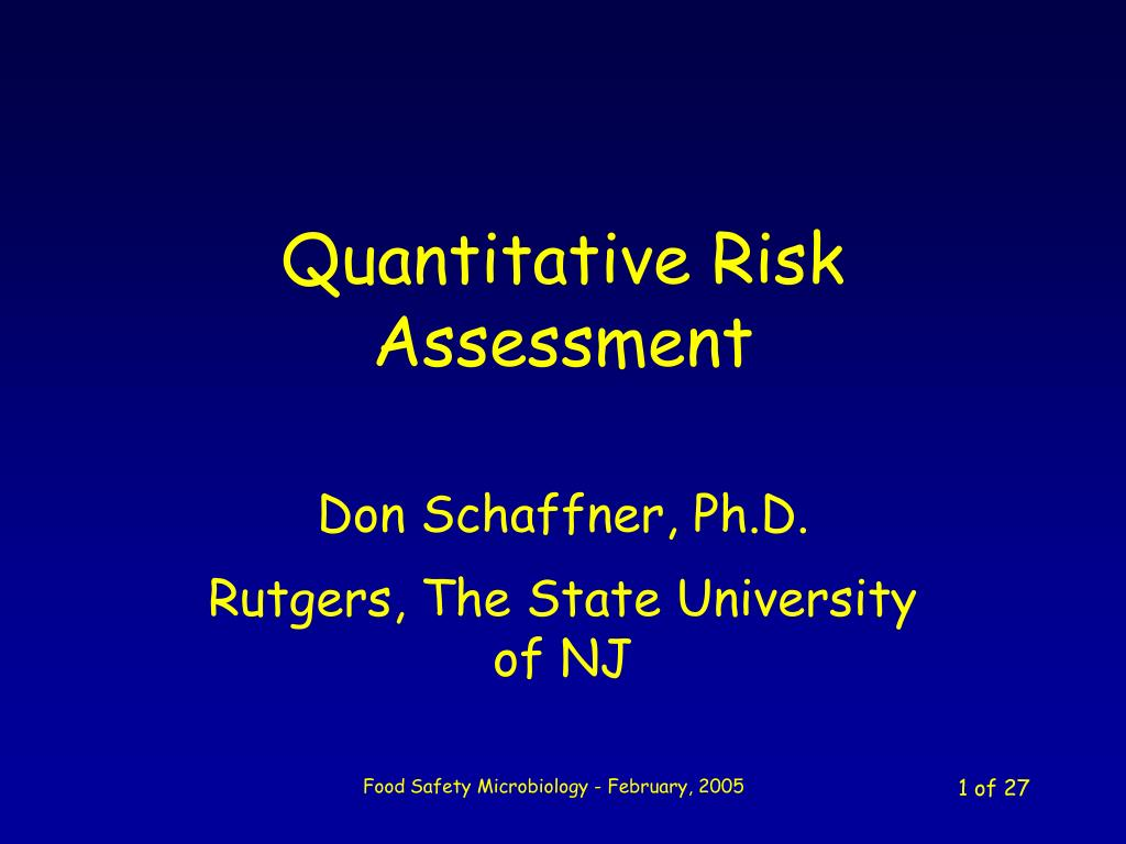 quantitative risk assessment l.