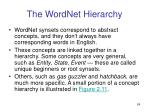 the wordnet hierarchy